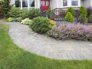 Myrtle Beach Landscape Design Services